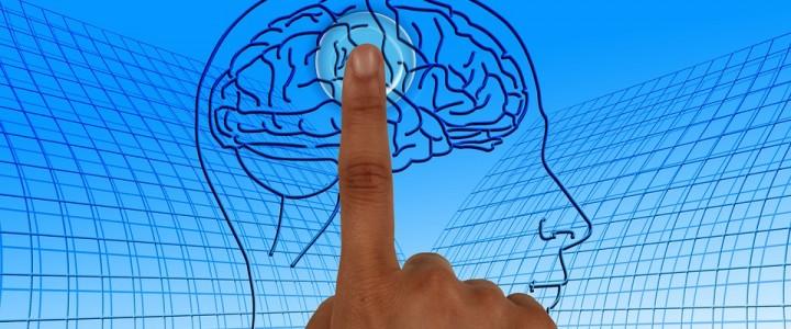 Когнитивные искажения в образовании