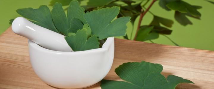 8 растений, которые заряжают энергией