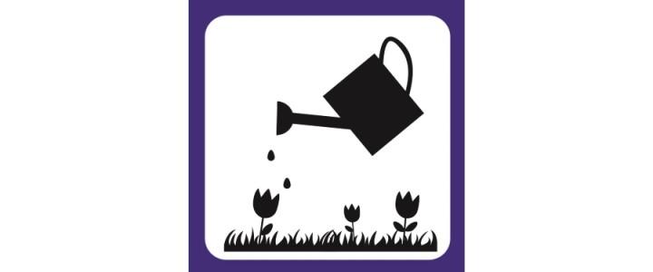 Открытие проекта #6соток в парке «Садовники»