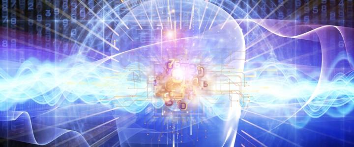 Ученые установили связь между ленью и уровнем интеллекта