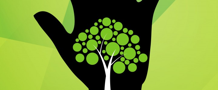 Творческий конкурс в области графики: «Экология Планеты-2017»