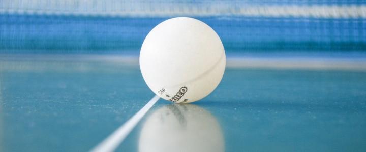 Чемпионат МПГУ по настольному теннису