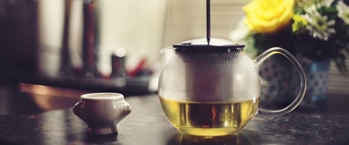 Зеленый чай не даст набрать вес и поддержит вашу память во время экзаменов