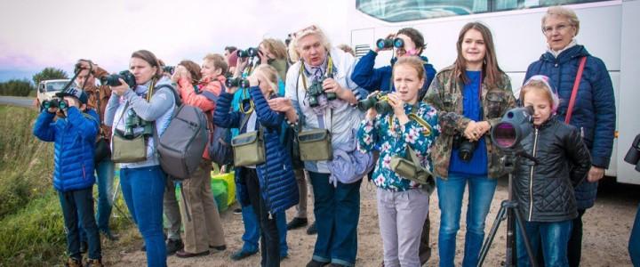 Осенний Фестиваль журавля на севере Московской области