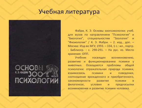 ¦б¦¬¦-¦¦¦+13