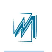 Национальный исследовательский Мордовский государственный университет имени Н.П. Огарёва (историко-социологический институт)