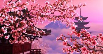 """Коллеги приглашают к участию воII-ом Всемирном Конгрессе """"Восток-Запад: пересечения культур"""", который пройдет 2-6 октября 2019 в Университете Киото Сангё, Япония."""