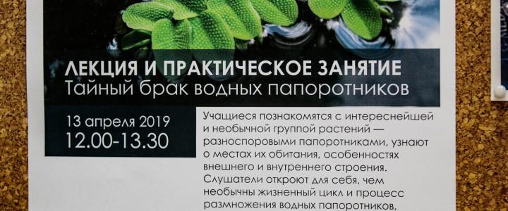 """Университетская суббота: """"Тайный брак водных папоротников"""""""