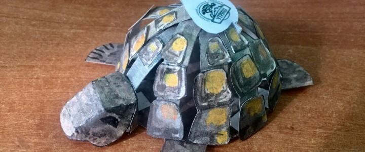 В Анапском филиале МПГУ прошел мастер-класс по бумаго-пластике, посвященный Всемирному дню черепахи