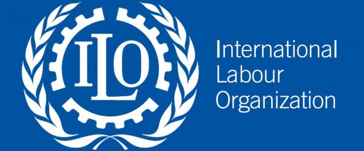Возможности стажировок в Международной организации труда (МОТ)