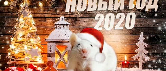 Поздравление с наступающим Новым годом от Библиотеки МПГУ