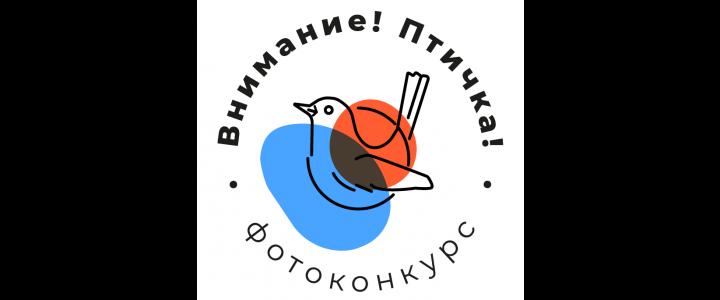 Завершился городской конкурс «Внимание! Птичка!»