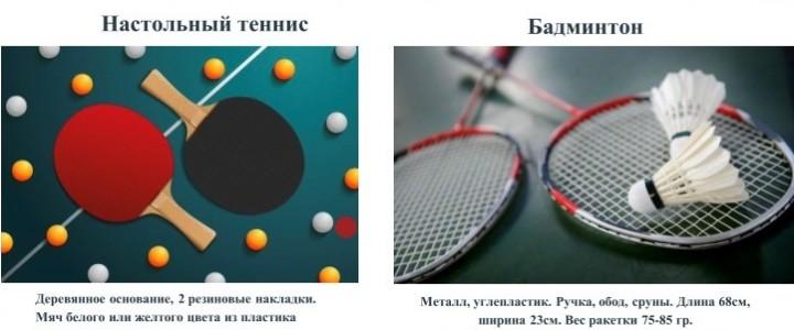 Польза индивидуально-игровых видов спорта в физическом воспитании на примере настольного тенниса и бадминтона