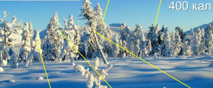 Снег: факты и мифы