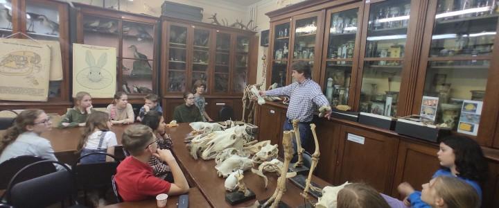Учащиеся школы №1535 познакомились с кранеологией млекопитающих