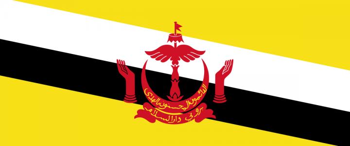 О приеме Государством Бруней-Даруссалам на обучение в 2021/2022 учебном году российских студентов